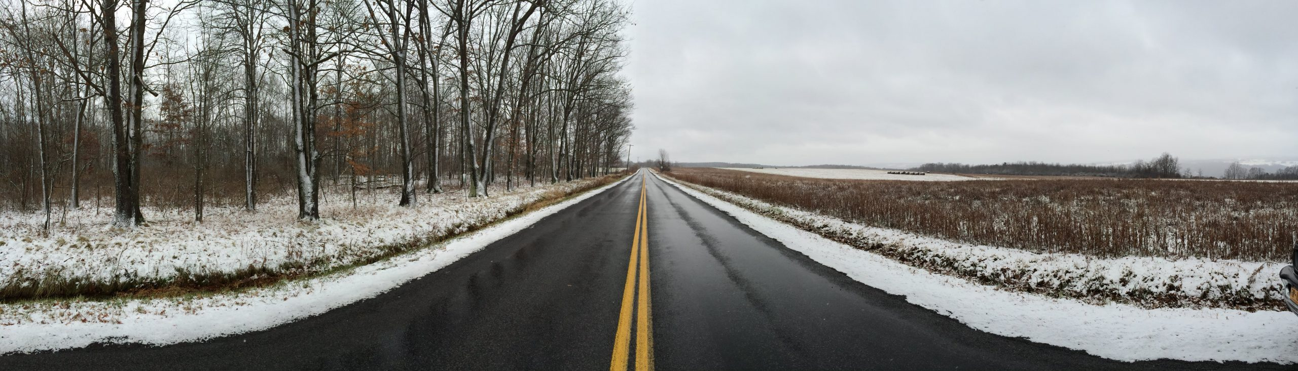 Bare trees and snow lining a clear road in West Danby